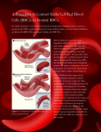 A Procedure to Convert Sickle Cell Red Blood Cells