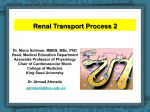 6-Renal transport Process2016-04-24 09:402.6 MB
