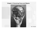 Chapter 5: Perceiving Faces and Objects