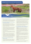 Predator Management Plan Summary