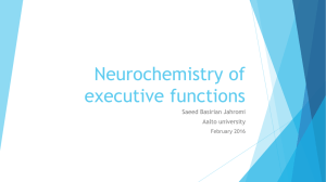 Neurochemistry of executive functions