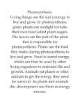 Photosynthesis. Living things use the sun`s energy to live and grow