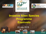Impacts of Invasive Alien Plants
