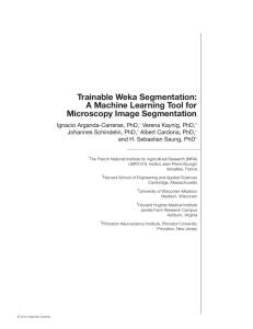 Trainable Weka Segmentation: A Machine Learning Tool for