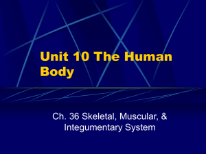 Unit 10 The Human Body - Jamestown Public Schools
