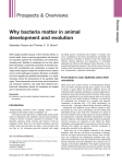 Why bacteria matter in animal development and evolution