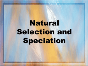 Natural Selection and Speciation PP