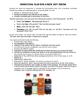Marketing Plan For A NEW SOFT DRINK