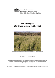The Biology of Hordeum vulgare L. (barley)
