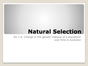 Natural Selection Depends on Genetic Variation
