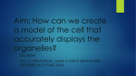 Aim: How can we create a model of the cell that accurately displays