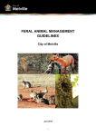 management of feral animals