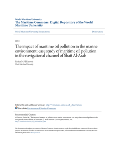 The impact of maritime oil pollution in the marine environment: case