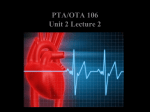 PTA/OTA 106 Unit 2 Lecture 2 Comparative Structure of Artery and