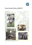 Feral Animal Policy draft