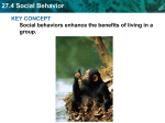 27.4 Social Behavior