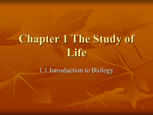 Chapter 1 Biology: The Study of Life