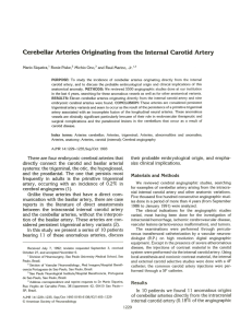Cerebellar Arteries Originating from the Internal Carotid Artery