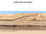 Scale types of Folds