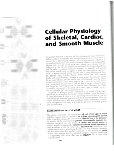 Cellular Physiology of Skeletal, Cardiac, and Smooth Muscle