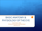 L02-anatomy and physiology of the eye (Prof. essam ).