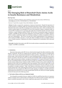 The Emerging Role of Branched-Chain Amino Acids in Insulin