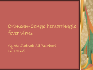 Crimean-Congo hemorrhagic fever virus