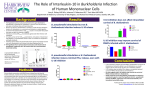 The Role of Interleukin-10 in Burkholderia Infection of Human