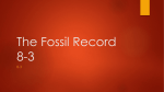 The Fossil Record 8-3