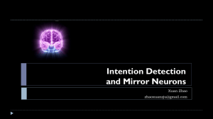 Mirror Neurons And Intention Detection