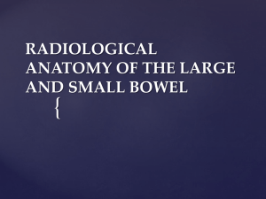 radiological anatomy of the bowel