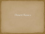 Desert Features in the Southwestern United States