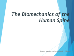 The Biomechanics of the Human Spine