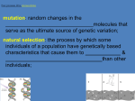 mutation: random changes in the that serve as the ultimate source of