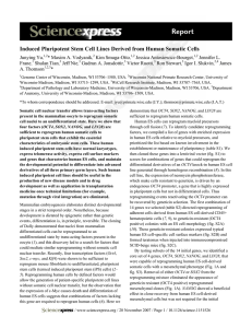Induced Pluripotent Stem Cell Lines Derived from