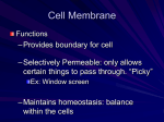 The Cell Theory and Membrane Transport
