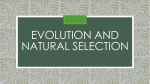 Evolution and Natural Selection PowerPoint
