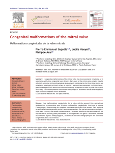 Congenital malformations of the mitral valve