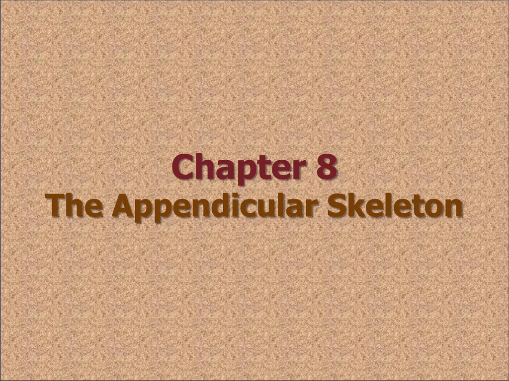 Chapter 8 The Appendicular Skeleton