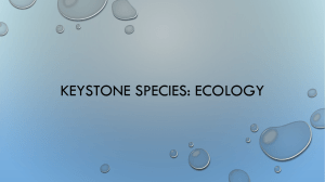 Keystone species: Ecology