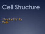 Intro to Cell Structure