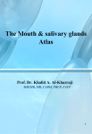 The Mouth and salivary glands atlas