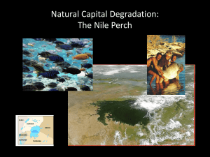 Natural Capital Degradation: The Nile Perch
