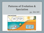Patterns of Evolution: Convergent Evolution vs. Divergent Evolution