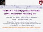 Effect of Topical Epigallocatechin Gallate to Treat Dry