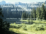 Managing for tree species diversity in a changing climate