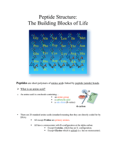 Peptide Structure: The Building Blocks of Life