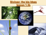 Biology: the study of life - Sonoma Valley High School