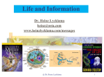Life and Information - Heinz Lycklama`s Website