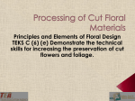 Lesson 06e Processing Cut Floral Materials PPT